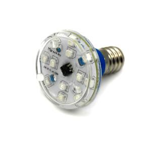 LED E14 XT16-37 110V blau (B)