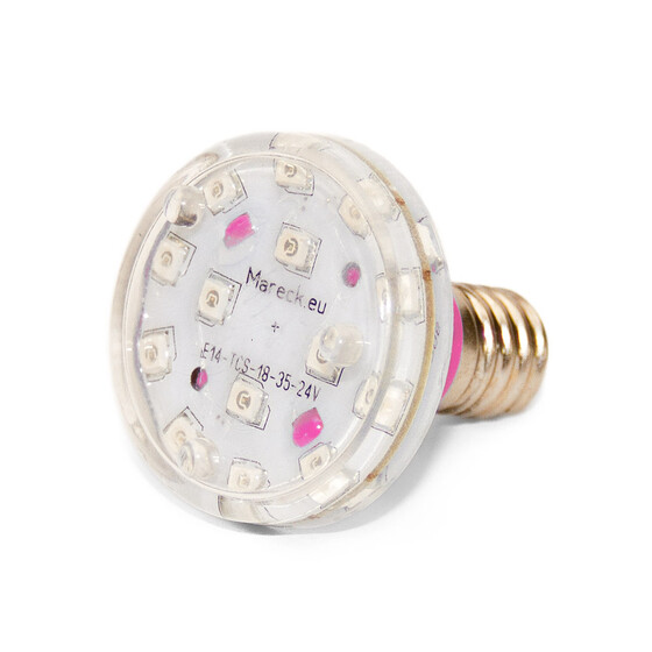 LED E14 XT18-37 24V pink (P)