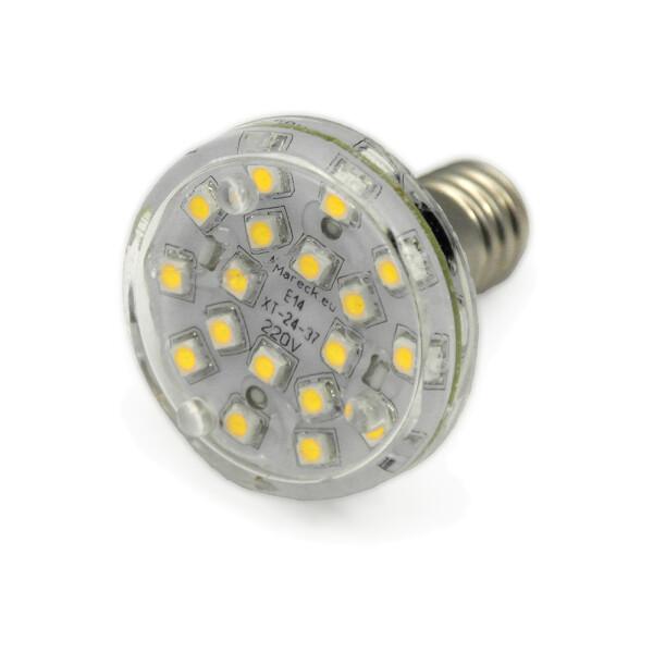LED E14 XT24-37 220V kaltweiß (CW)