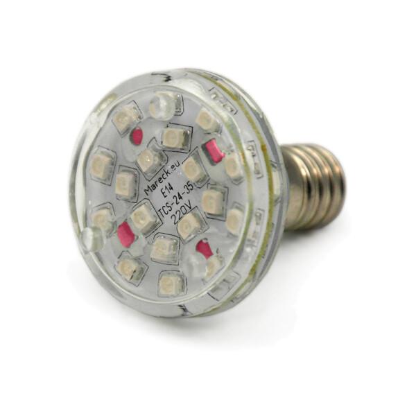 LED E14 XT24-37 220V pink (P)